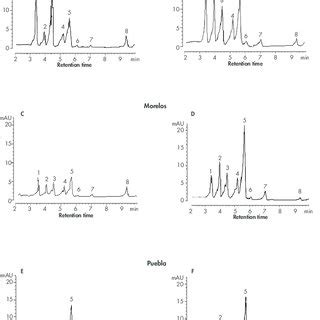 (PDF) Anxiolytic and sedative-like effects of flavonoids