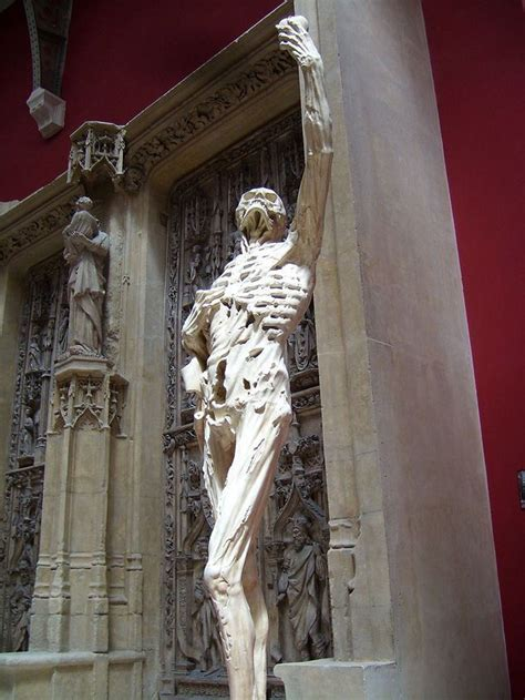 Haunting Statues From Around the World 1) David