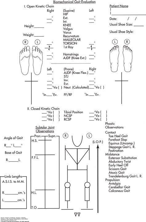 Physical Therapy Initial Evaluation Sample   Classles