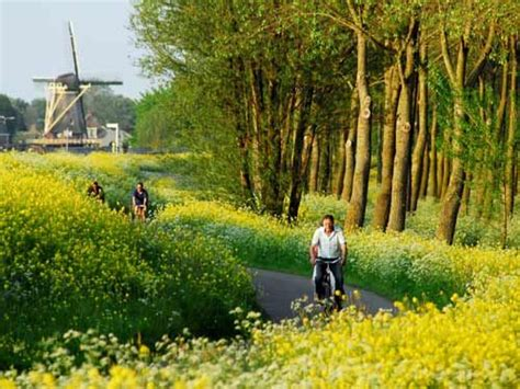 Near Delft, The Netherlands Life behind the dikes