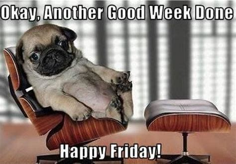 It's Friday, Friday, Got to Meme Down on Friday | Funny